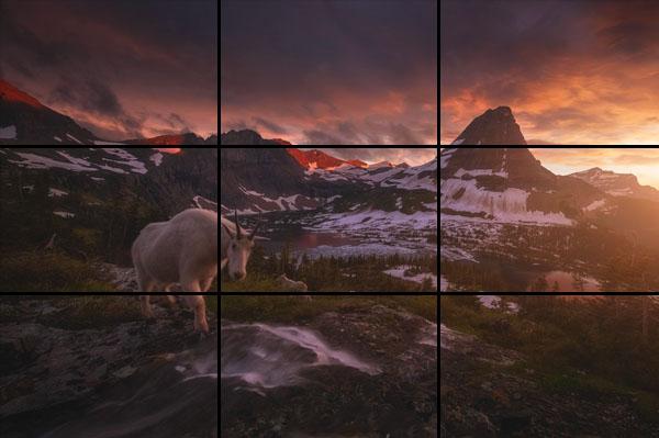 10 errori più comuni commessi mentre fotografi, composizione