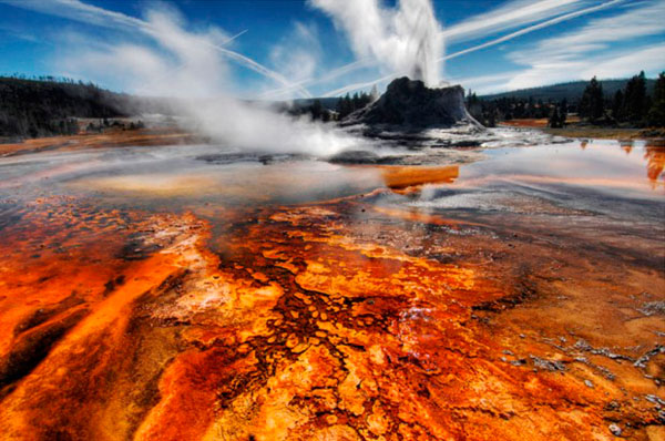 Parco Nazionale Yellowstone - Stati Uniti