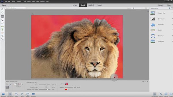 Photoshop Elements 14, novità, adobe, fotoritocco.