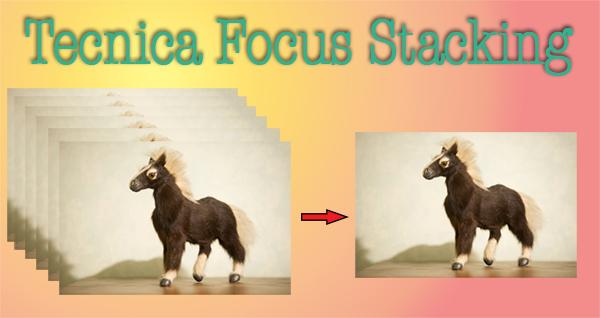 Focus stalking, tecnica fotografica