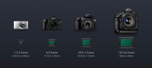 APS-C, Full-Frame, sensori digitali, differenze tra i sensori digitali