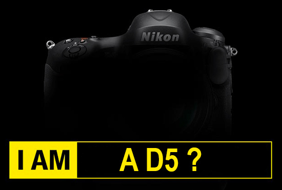 Nikon D5, Rumors, Reflex,