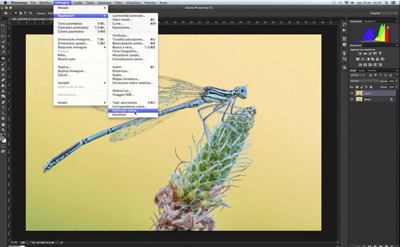 come cambiare colore allo sfondo, tutorial Photosohp, sostituzione colore