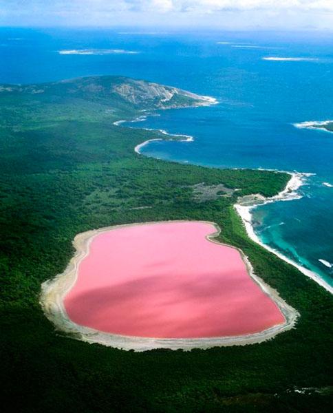 Hiller lake (pink lake) - Western Australia, luoghi più belli e mozzafiato del mondo