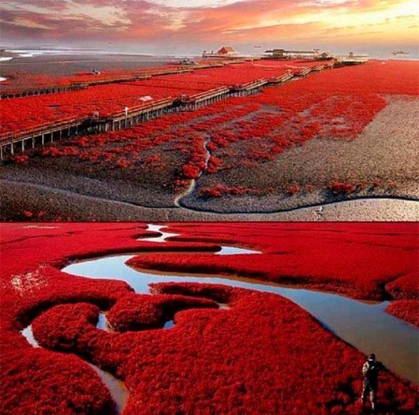 Panjin - China, luoghi più belli e mozzafiato del mondo