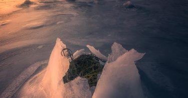 Viaggio Fotografico alle Lofoten