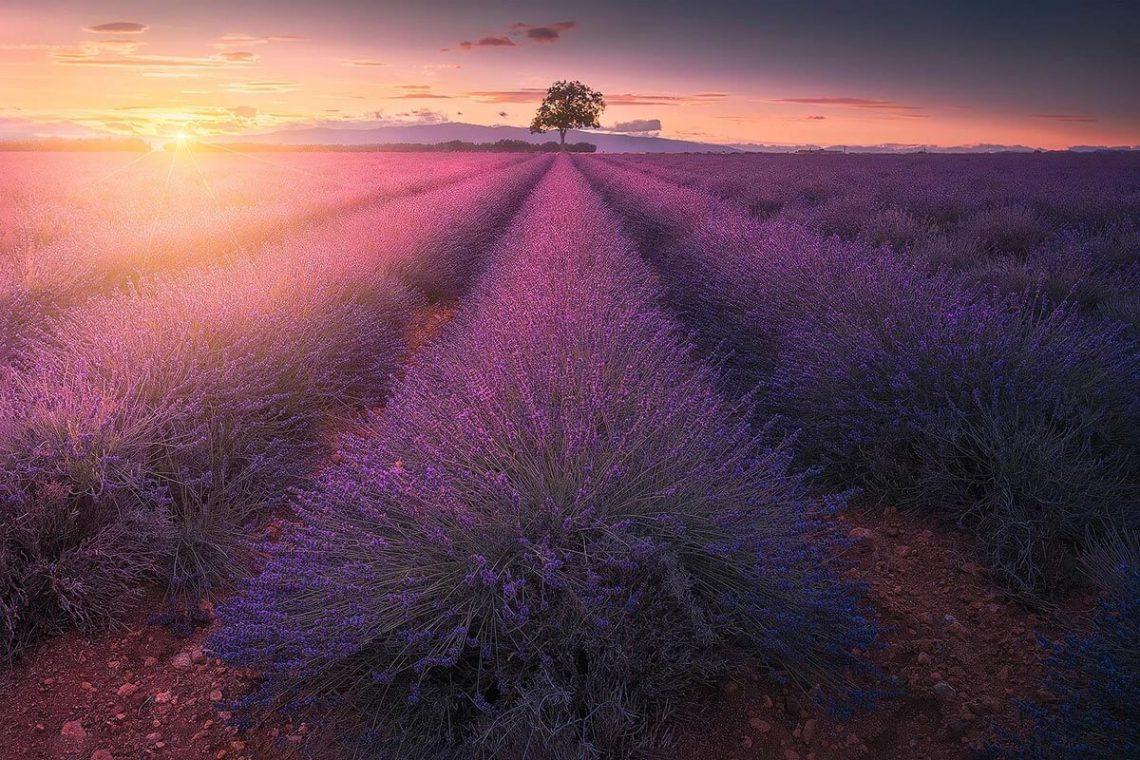 Viaggio Fotografico in provenza